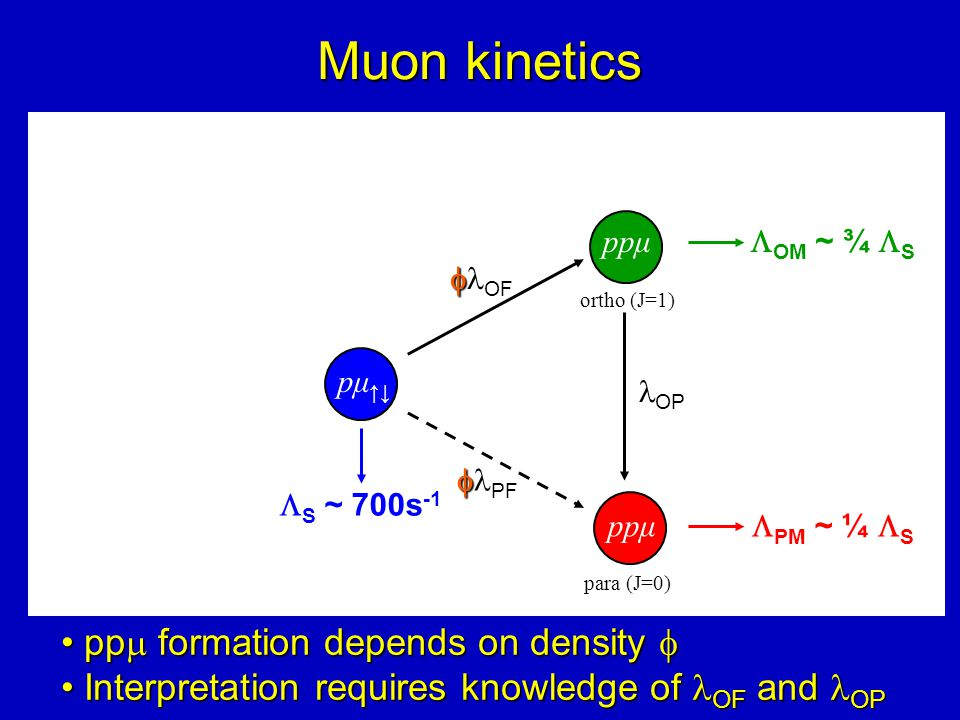Muon kinetics pp  formation depends on density  pp  formation depends on density  Interpretation requires knowledge of OF and OP Interpretation requires knowledge of OF and OP pμ ↑↓  S ~ 700s -1 OP ortho (J=1) ppμ   OF para (J=0) ppμ   PF  OM ~ ¾  S  PM ~ ¼  S