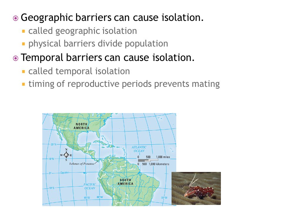 Geographic barriers can cause isolation.  called geographic isolation  physical barriers divide population  Temporal barriers can cause isolation