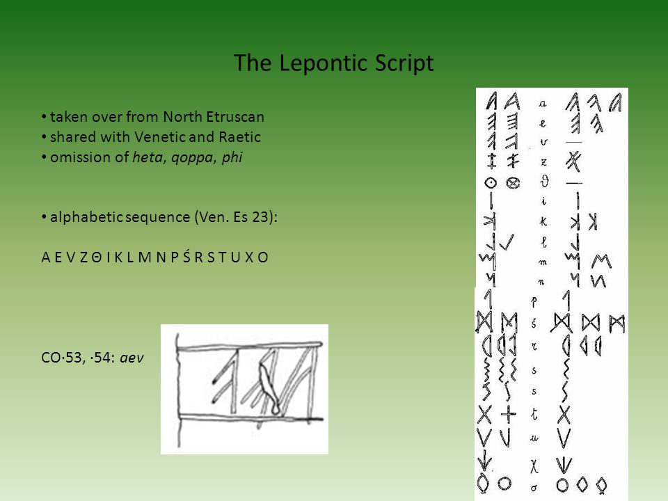 The Lepontic Script 8 taken over from North Etruscan shared with Venetic and Raetic omission of heta, qoppa, phi alphabetic sequence (Ven.