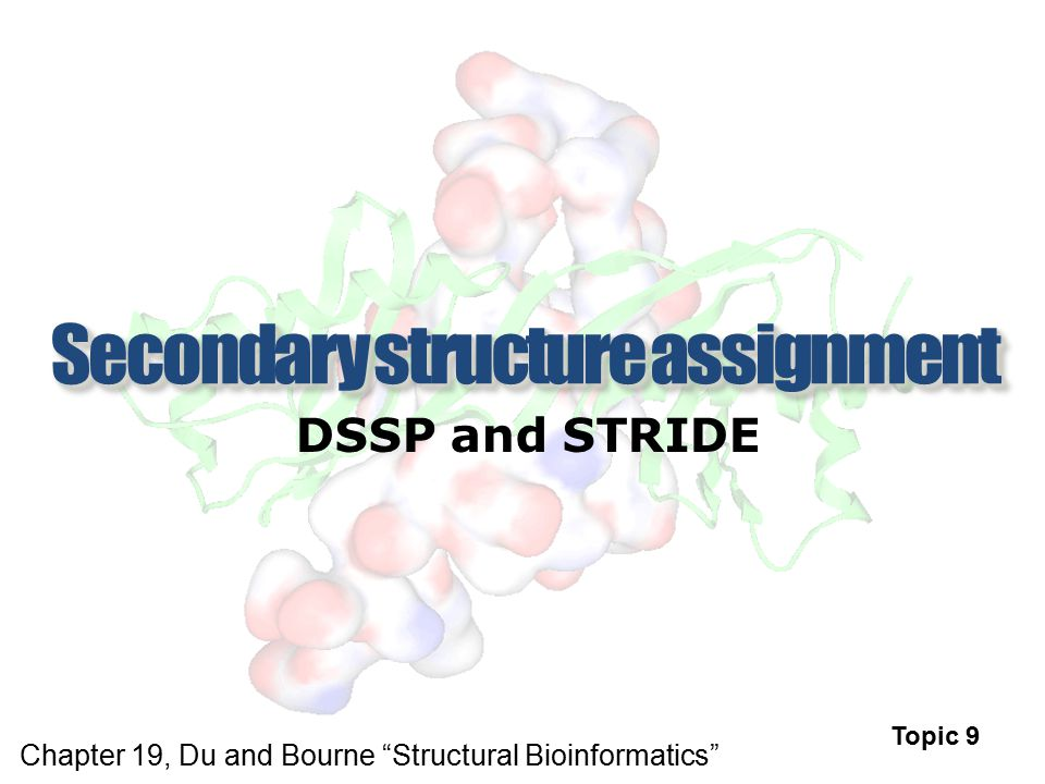 "DSSP and STRIDE Topic 9 Chapter 19, Du and Bourne ""Structural Bioinformatics"""