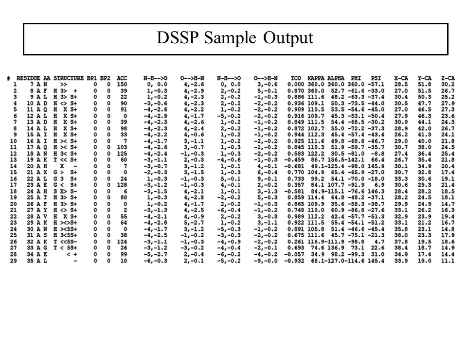 DSSP Sample Output