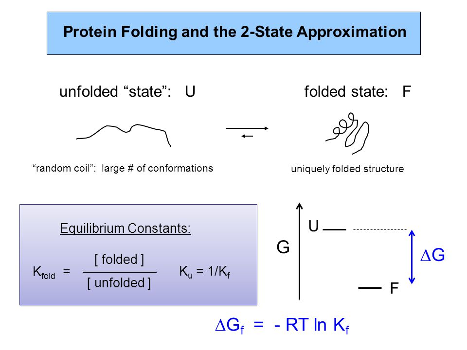 Protein Folding and the 2-State Approximation unfolded state : Ufolded state: F random coil : large # of conformationsuniquely folded structure  G f = - RT ln K f K fold = [ folded ] [ unfolded ] K u = 1/K f Equilibrium Constants: U F G GG