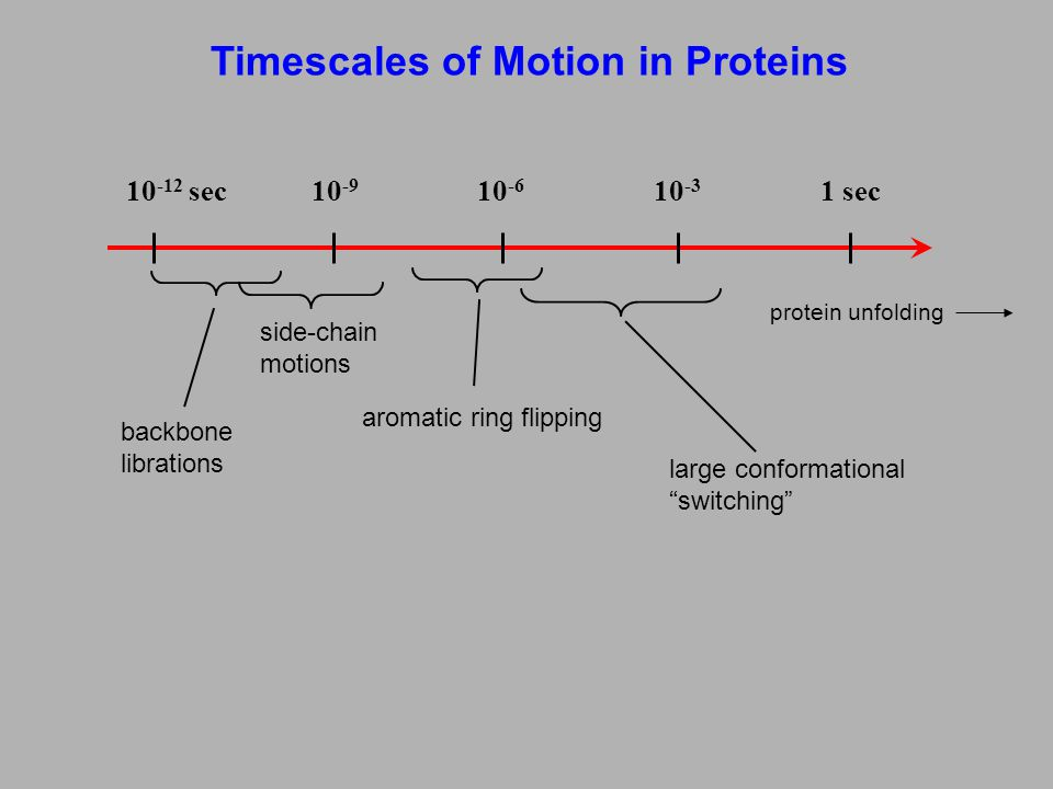 Timescales of Motion in Proteins 10 -12 sec10 -9 10 -6 10 -3 1 sec large conformational switching protein unfolding aromatic ring flipping side-chain motions backbone librations