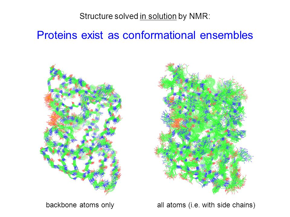 Structure solved in solution by NMR: Proteins exist as conformational ensembles backbone atoms onlyall atoms (i.e.