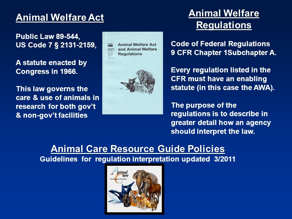 Animal Welfare Act Public Law 89-544, US Code 7 § 2131-2159, A statute enacted by Congress in 1966.