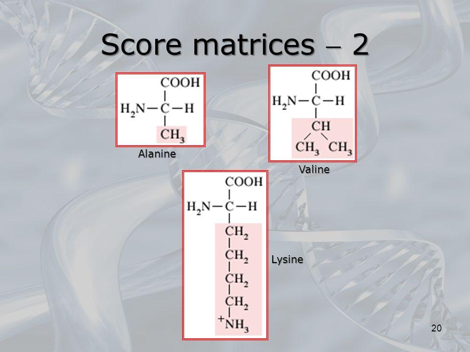 20 Lysine Alanine Valine Score matrices  2
