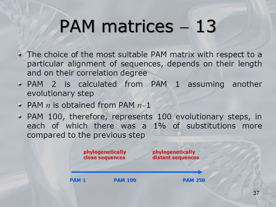 PAM matrices  13 The choice of the most suitable PAM matrix with respect to a particular alignment of sequences, depends on their length and on their correlation degree PAM 2 is calculated from PAM 1 assuming another evolutionary step PAM n is obtained from PAM n 1 PAM 100, therefore, represents 100 evolutionary steps, in each of which there was a 1% of substitutions more compared to the previous step 37 PAM 1 PAM 100 PAM 250 phylogenetically close sequences phylogenetically distant sequences
