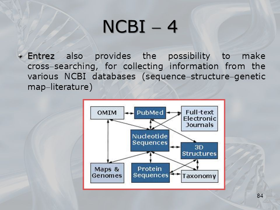 NCBI  4 84 Entrez Entrez also provides the possibility to make crosssearching, for collecting information from the various NCBI databases (sequencestructuregenetic mapliterature)