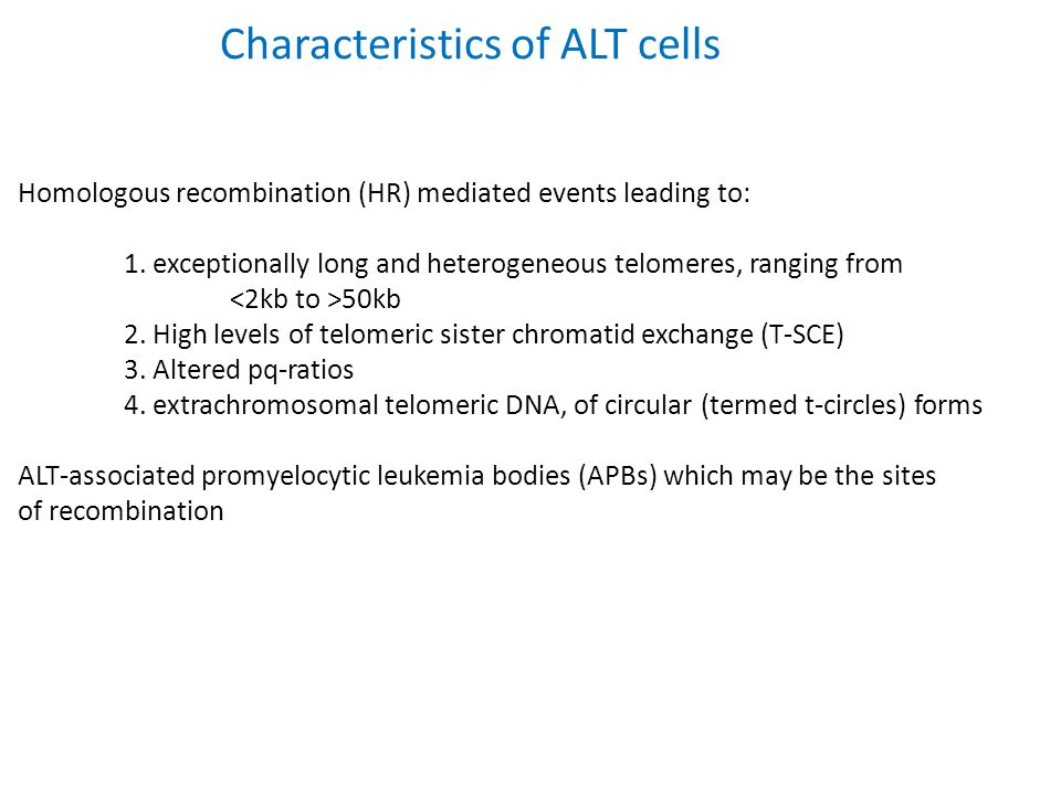 Characteristics of ALT cells Homologous recombination (HR) mediated events leading to: 1. exceptionally long and heterogeneous telomeres, ranging from