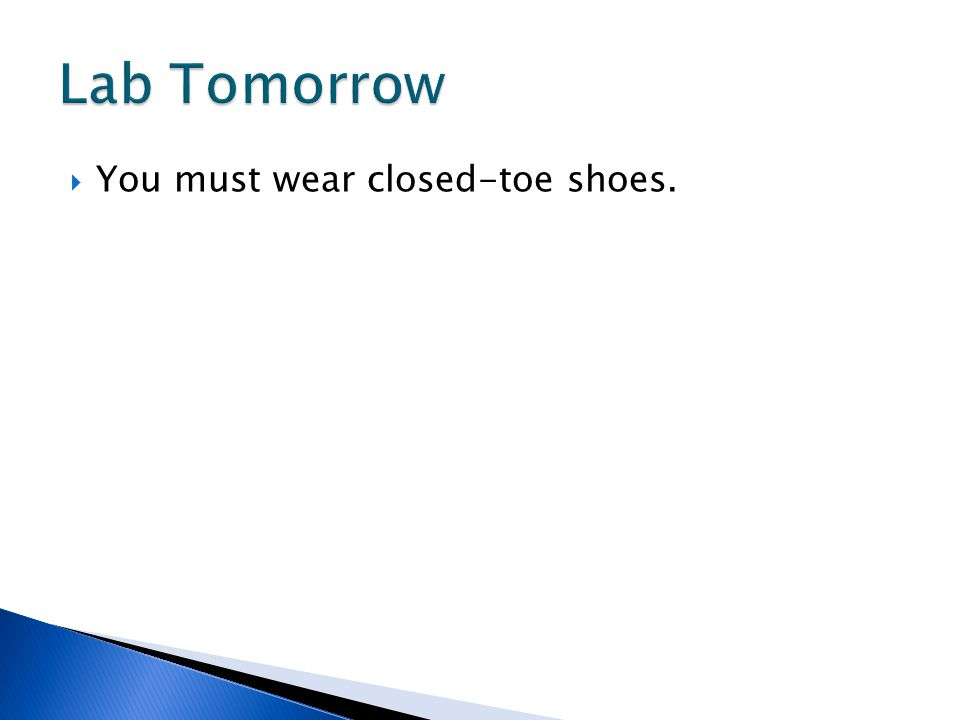  You must wear closed-toe shoes.