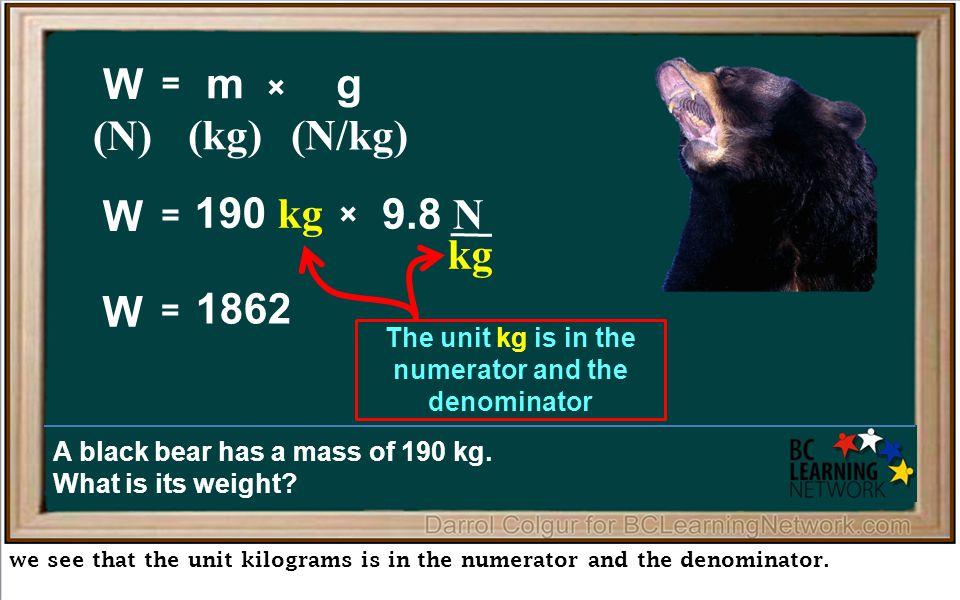 kg we see that the unit kilograms is in the numerator and the denominator.