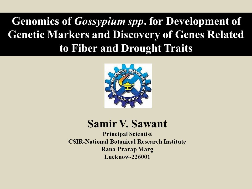 Synopsis of Presentation: I.Large Scale Genomic Resource Development in Cotton.