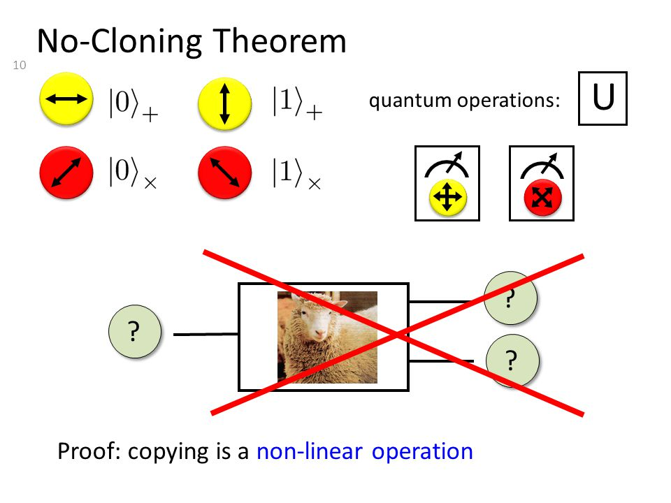 10 No-Cloning Theorem quantum operations: U Proof: copying is a non-linear operation