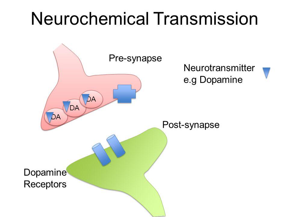 Neurochemical Transmission DA Pre-synapse Post-synapse Neurotransmitter e.g Dopamine Dopamine Receptors