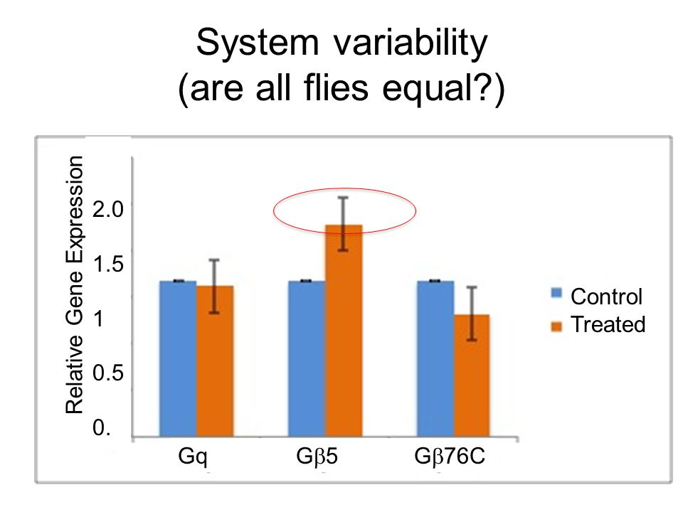 System variability (are all flies equal?) Relative Gene Expression Gq G  5 G  76C Control Treated 2.0 1.5 1 0.5 0.