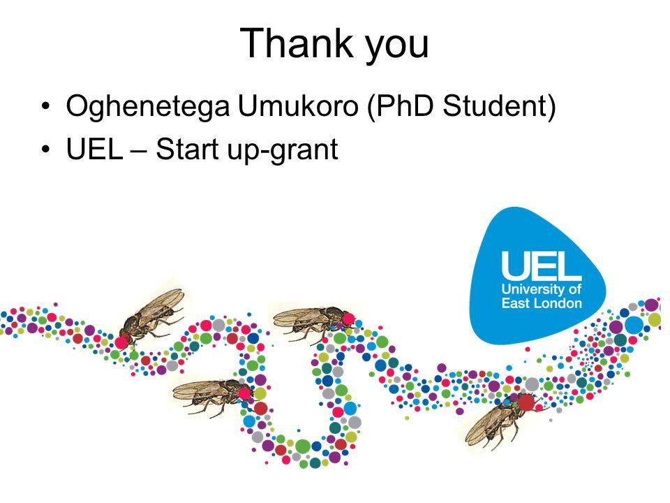 Thank you Oghenetega Umukoro (PhD Student) UEL – Start up-grant