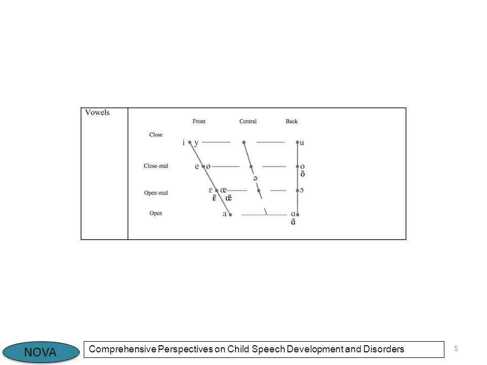 NOVA Comprehensive Perspectives on Child Speech Development and Disorders 5