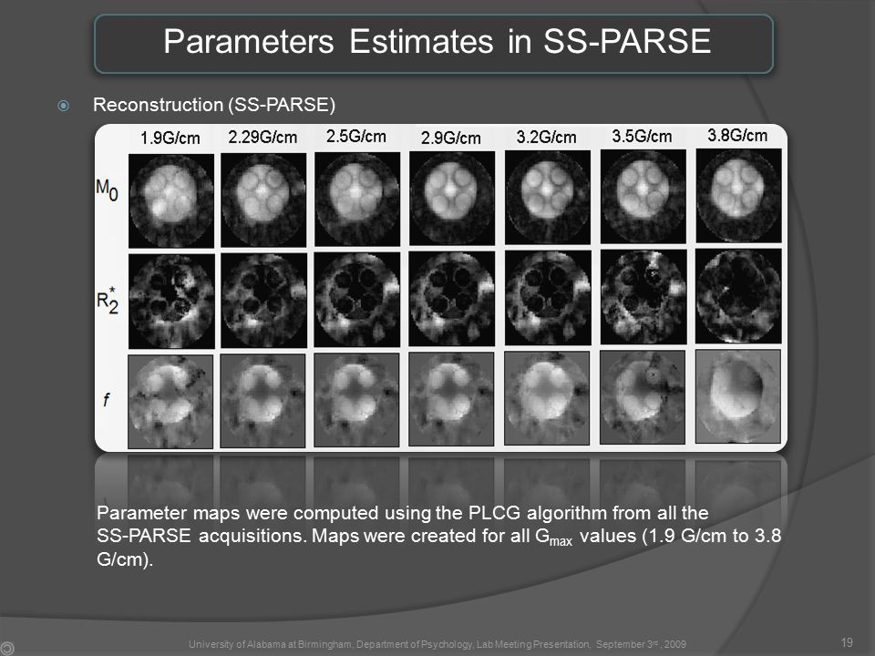 Parameters Estimates in SS-PARSE  Reconstruction (SS-PARSE) Parameter maps were computed using the PLCG algorithm from all the SS-PARSE acquisitions.