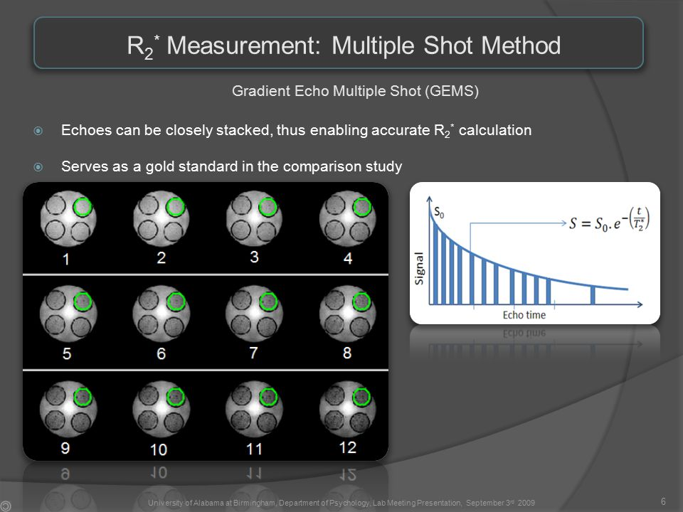 R 2 * Measurement: Multiple Shot Method Gradient Echo Multiple Shot (GEMS)  Echoes can be closely stacked, thus enabling accurate R 2 * calculation  Serves as a gold standard in the comparison study 6 University of Alabama at Birmingham, Department of Psychology, Lab Meeting Presentation, September 3 rd 2009