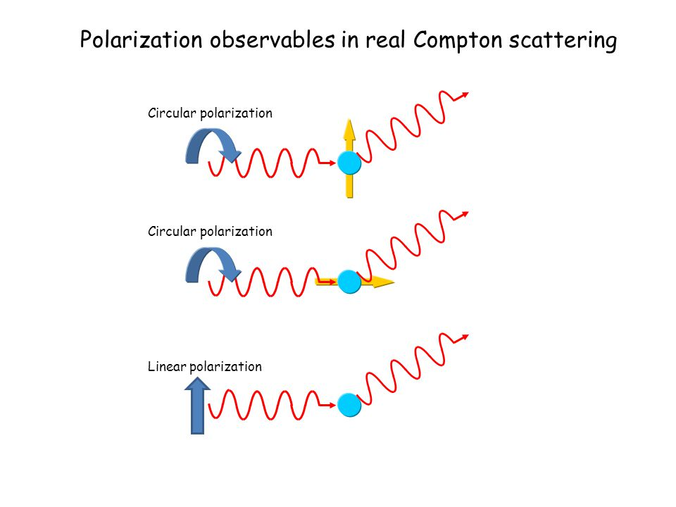 Polarization observables in real Compton scattering Circular polarization Linear polarization
