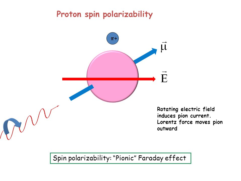 ++ Spin polarizability: Pionic Faraday effect Proton spin polarizability Rotating electric field induces pion current.