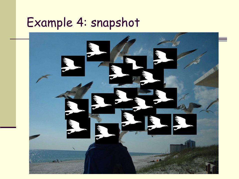 Example 4: snapshot