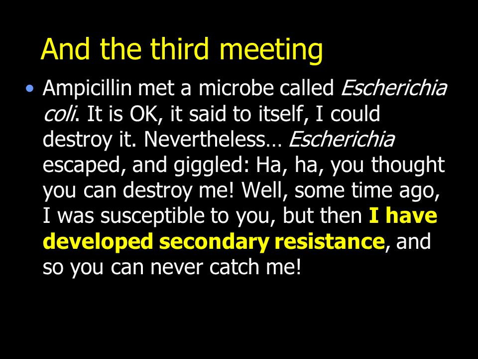 And the third meeting Ampicillin met a microbe called Escherichia coli.