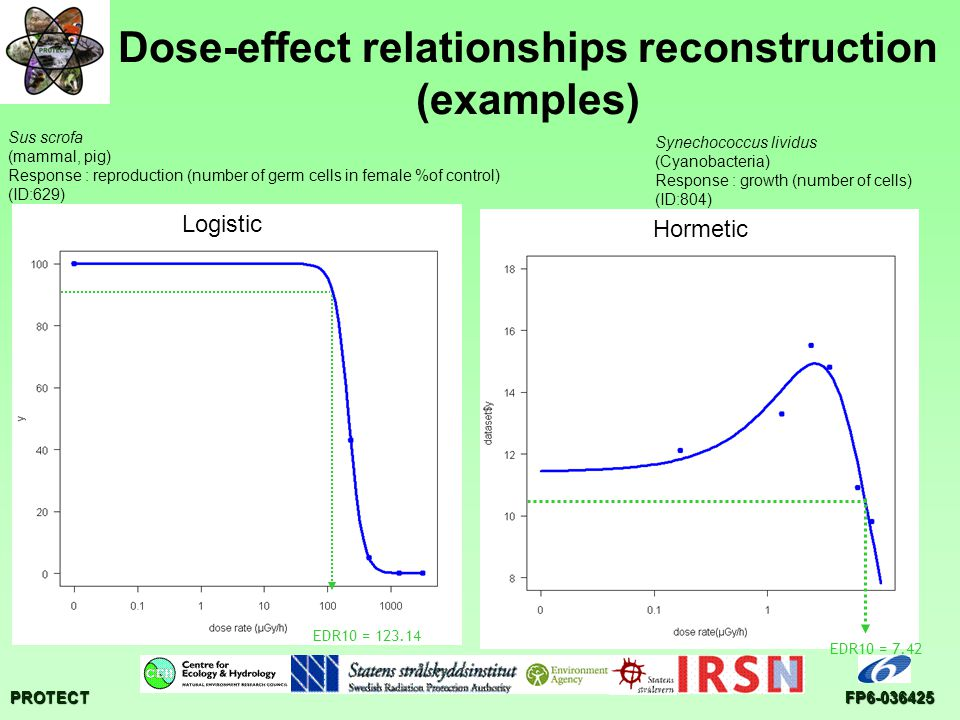PROTECTFP6-036425 Dose-effect relationships reconstruction (examples) EDR10 = 7.42 Synechococcus lividus (Cyanobacteria) Response : growth (number of