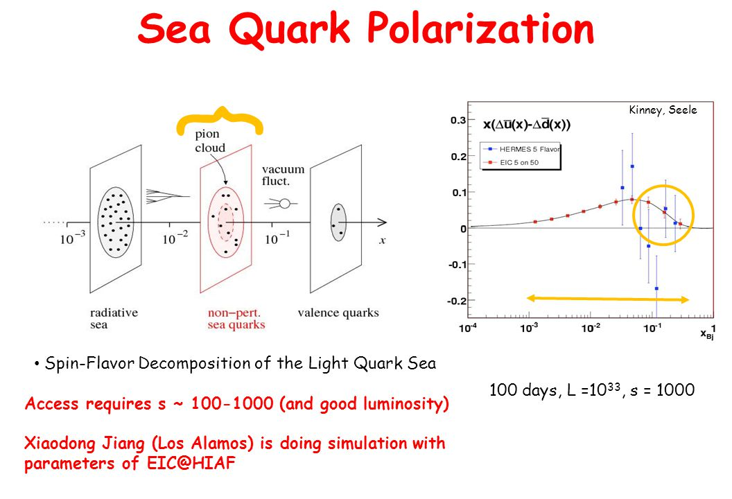 100 days, L =10 33, s = 1000 Sea Quark Polarization Spin-Flavor Decomposition of the Light Quark Sea Access requires s ~ 100-1000 (and good luminosity) Xiaodong Jiang (Los Alamos) is doing simulation with parameters of EIC@HIAF } Kinney, Seele