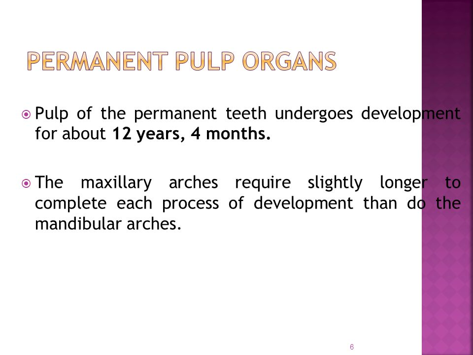 Pulp of the permanent teeth undergoes development for about 12 years, 4 months.  The maxillary arches require slightly longer to complete each proc