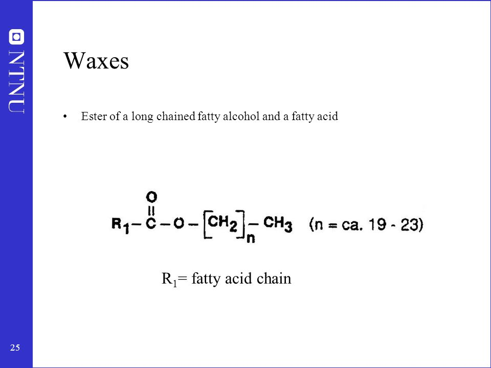 25 Waxes Ester of a long chained fatty alcohol and a fatty acid R 1 = fatty acid chain