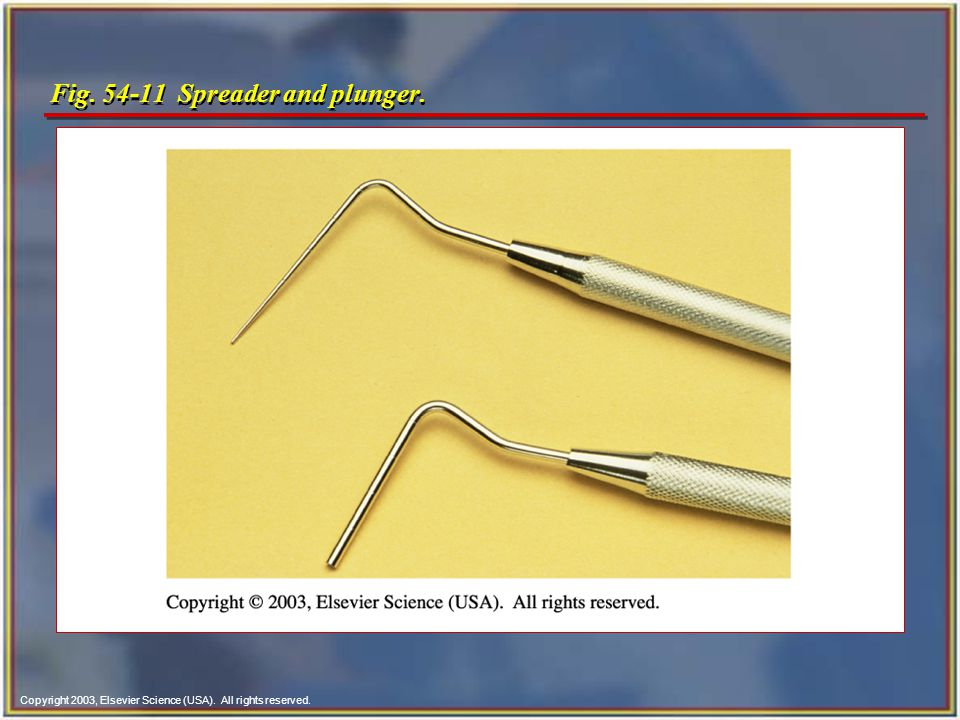 Copyright 2003, Elsevier Science (USA). All rights reserved. Fig. 54-11 Spreader and plunger.