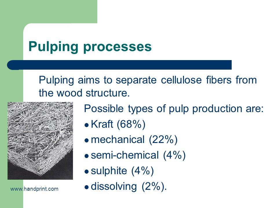 Pulping processes Pulping aims to separate cellulose fibers from the wood structure. Possible types of pulp production are: Kraft (68%) mechanical (22