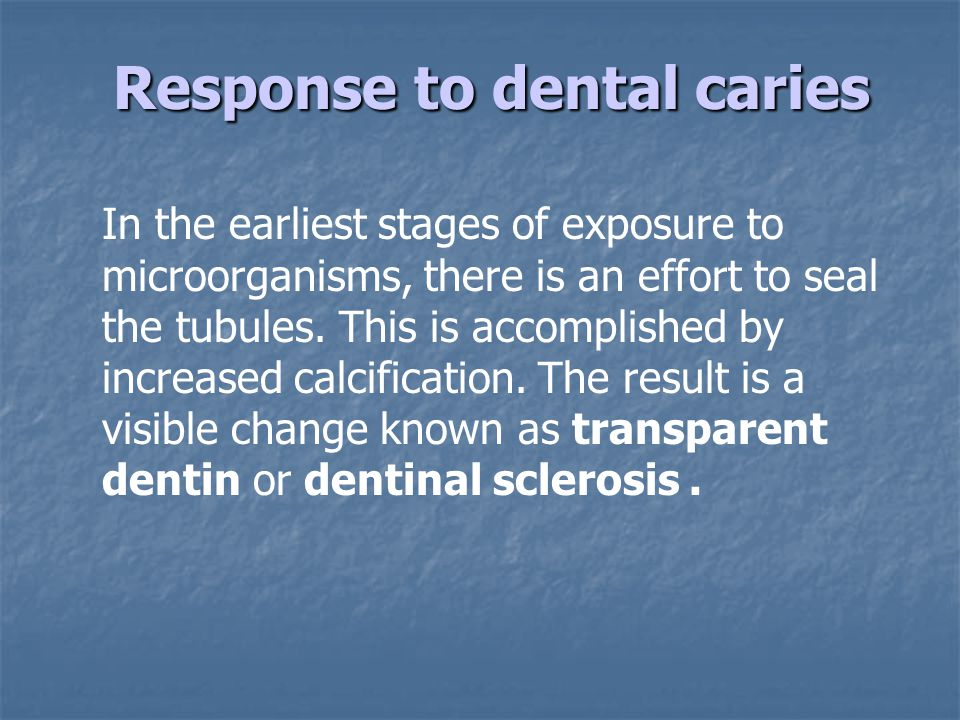 Response to dental caries Response to dental caries In the earliest stages of exposure to microorganisms, there is an effort to seal the tubules.