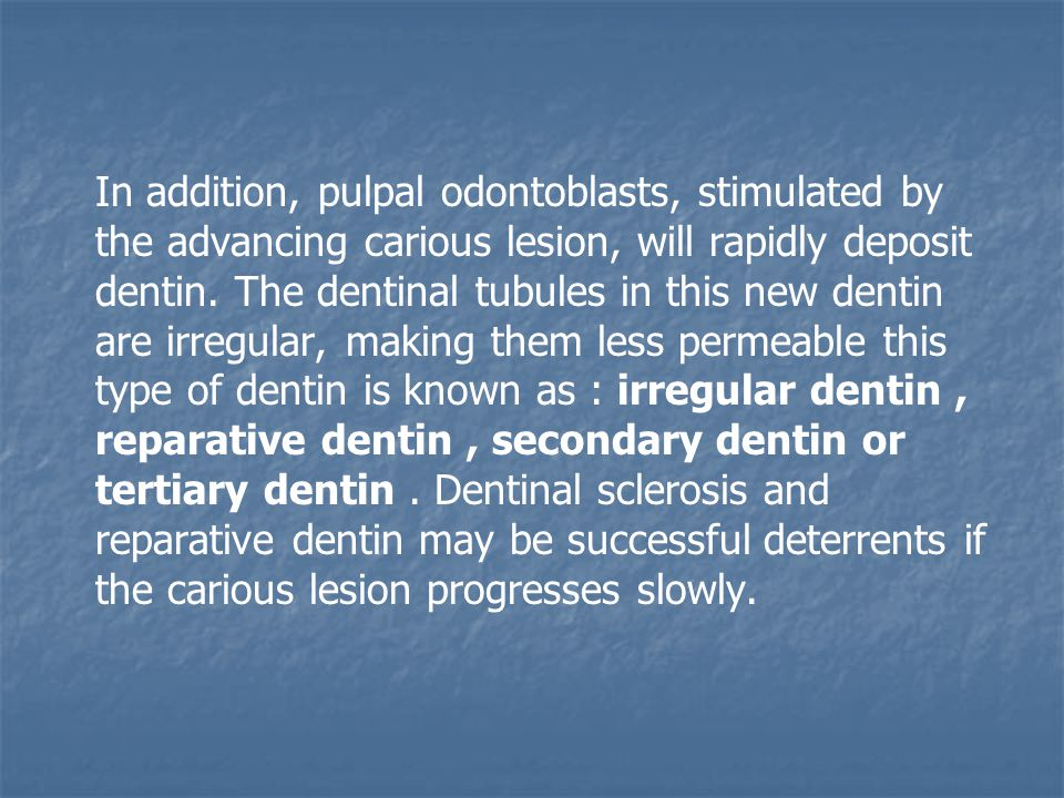 In addition, pulpal odontoblasts, stimulated by the advancing carious lesion, will rapidly deposit dentin.