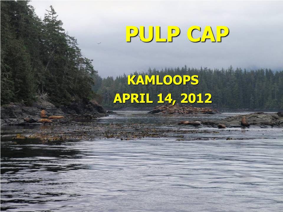 SUCCESSFUL PULP CAPS Inflammation management