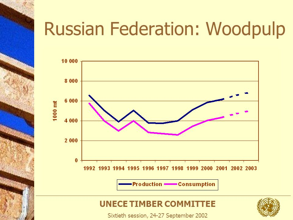 UNECE TIMBER COMMITTEE Sixtieth session, 24-27 September 2002 Russian Federation: Woodpulp