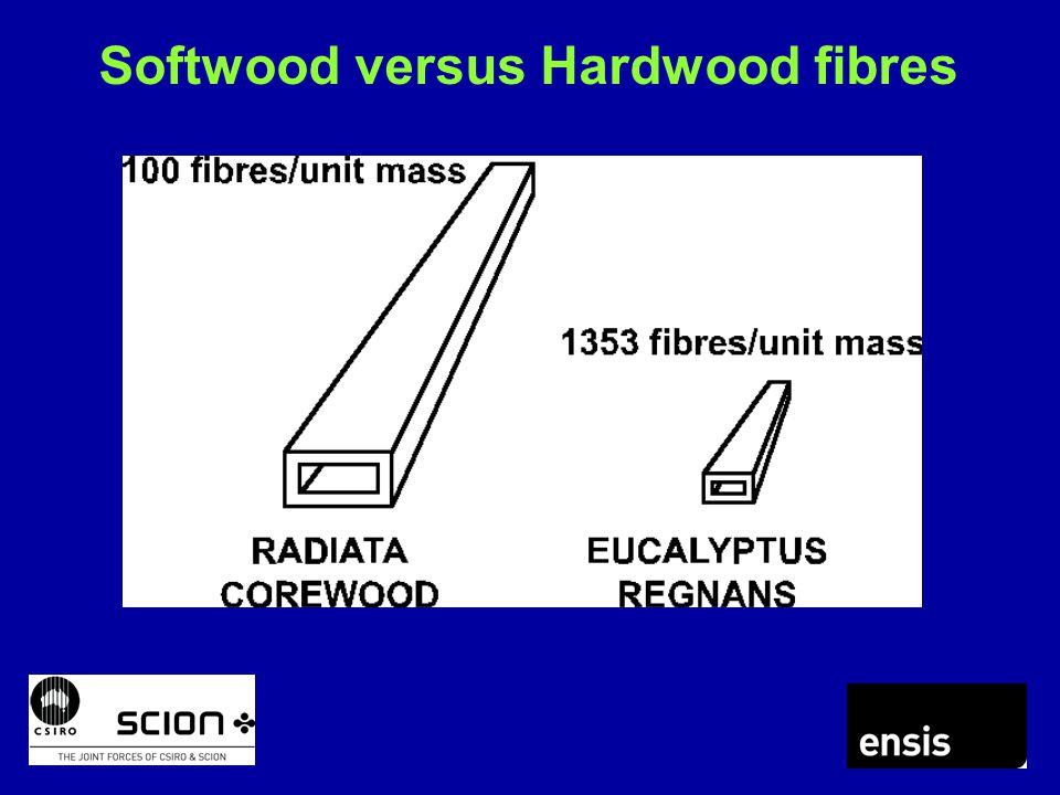 Softwood versus Hardwood fibres