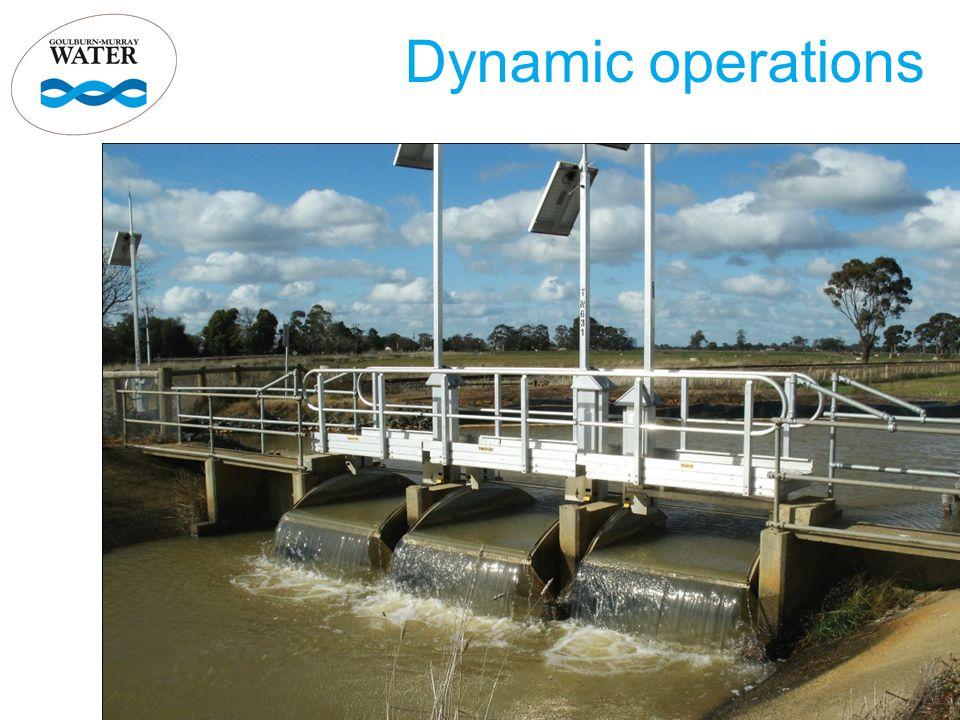 Dynamic operations