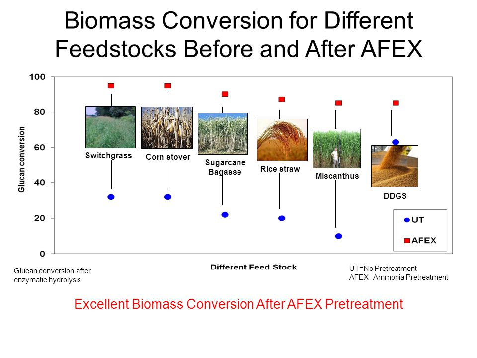 Glucan conversion for various AFEX treated Feed stocks Switchgrass Sugarcane Bagasse DDGS Rice straw Corn stover Miscanthus UT=No Pretreatment AFEX=Am