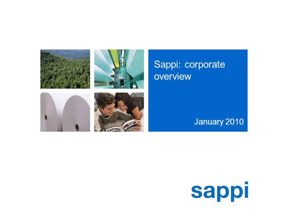 Sappi: corporate overview January 2010