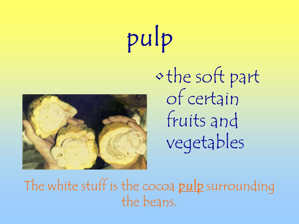 pulp the soft part of certain fruits and vegetables The white stuff is the cocoa pulp surrounding the beans.