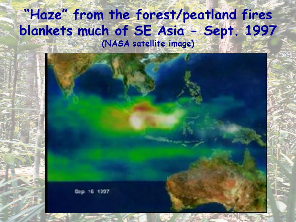 Haze from the forest/peatland fires blankets much of SE Asia - Sept. 1997 (NASA satellite image)