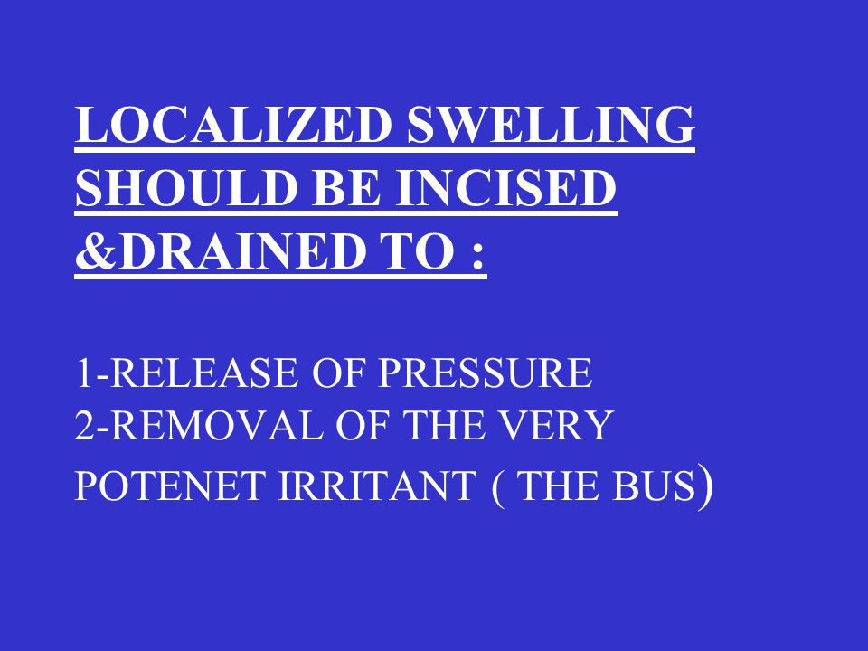 LOCALIZED SWELLING SHOULD BE INCISED &DRAINED TO : 1-RELEASE OF PRESSURE 2-REMOVAL OF THE VERY POTENET IRRITANT ( THE BUS )