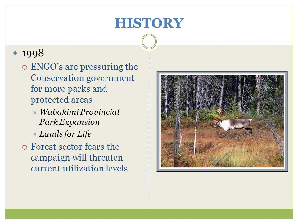 HISTORY 1998  ENGO's are pressuring the Conservation government for more parks and protected areas  Wabakimi Provincial Park Expansion  Lands for Life  Forest sector fears the campaign will threaten current utilization levels