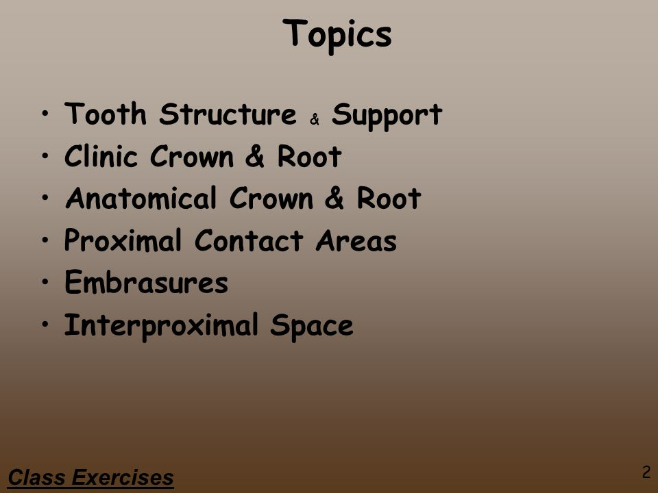 2 Class Exercises Topics Tooth Structure & Support Clinic Crown & Root Anatomical Crown & Root Proximal Contact Areas Embrasures Interproximal Space
