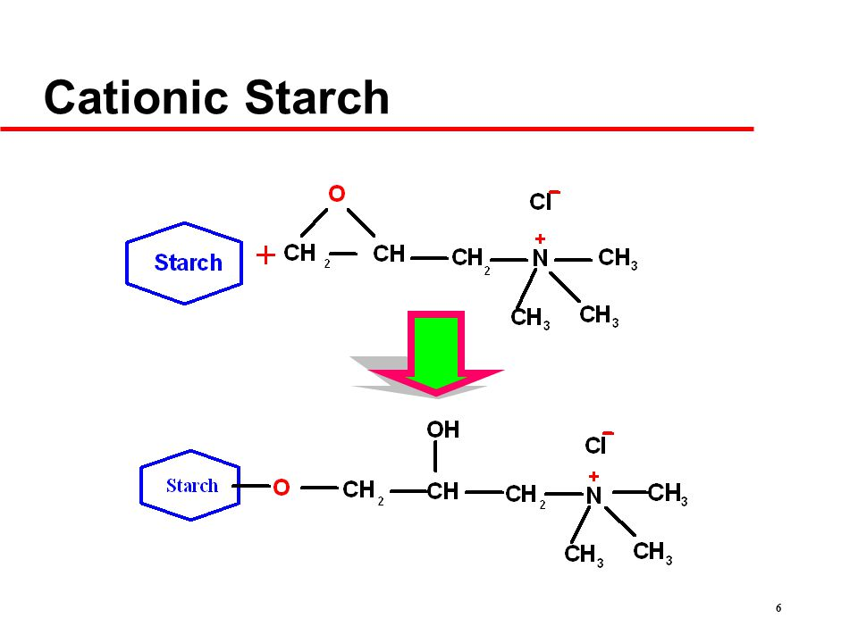 6 Cationic Starch
