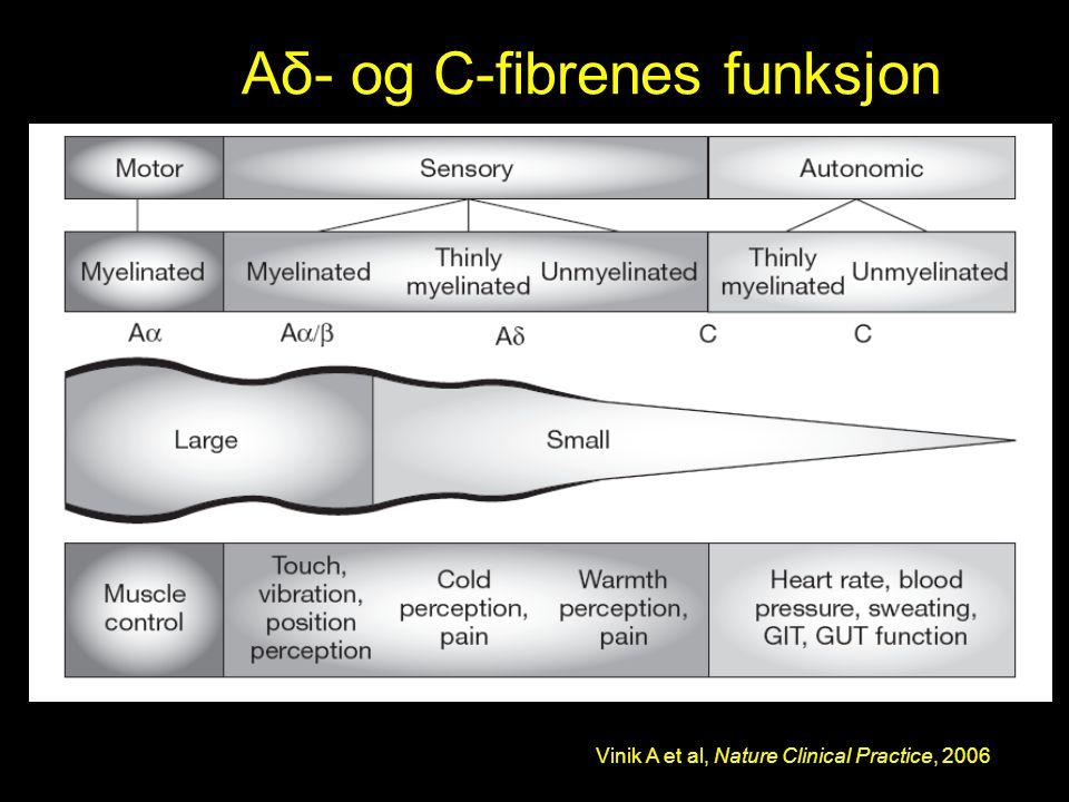 Aδ- og C-fibrenes funksjon Vinik A et al, Nature Clinical Practice, 2006