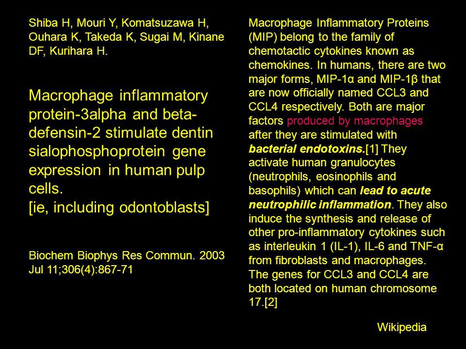 Shiba H, Mouri Y, Komatsuzawa H, Ouhara K, Takeda K, Sugai M, Kinane DF, Kurihara H. Macrophage inflammatory protein-3alpha and beta- defensin-2 stimu