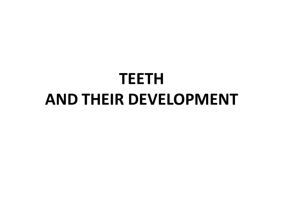 TEETH AND THEIR DEVELOPMENT